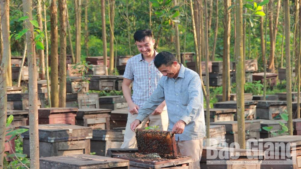 Giọt vàng, Tây Yên Tử, mật ong Tây Yên Tử, Bắc Giang, Thương hiệu vàng nông nghiệp Việt Nam