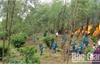 Bắc Giang: Nhiều khu vực đang ở mức cảnh báo cháy rừng cấp cực kỳ nguy hiểm