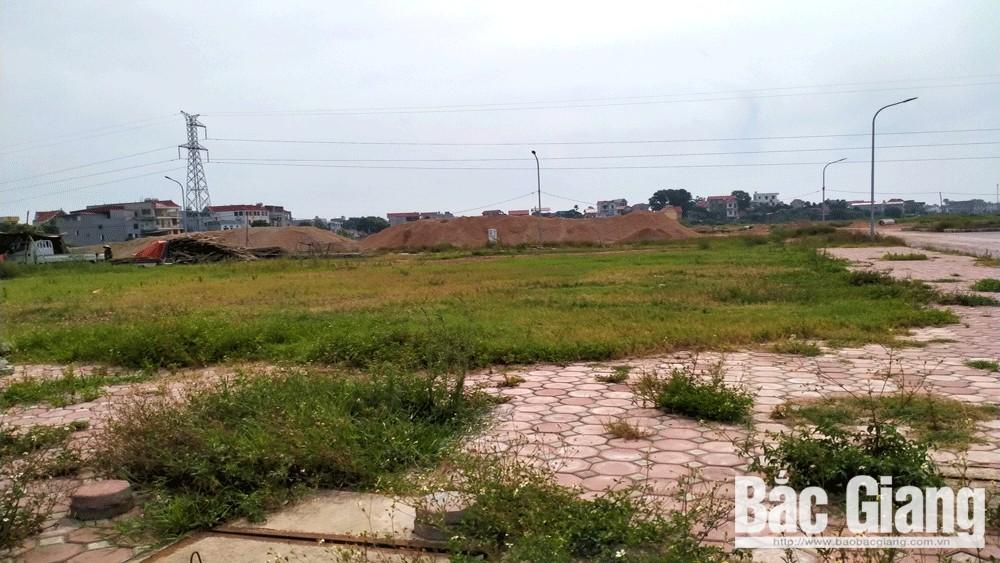 bất động sản, đấu giá đất, Bắc Giang