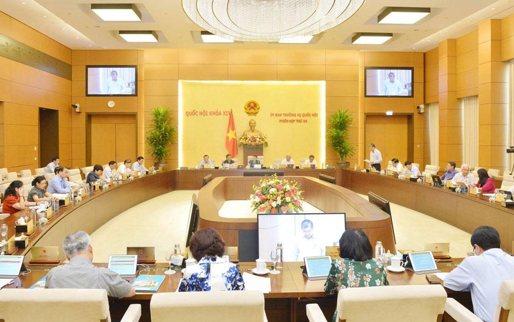 Chủ tịch Quốc hội Nguyễn Thị Kim Ngân, Kỳ họp thứ 10, Quốc hội khóa XIV, họp trực tuyến, Quốc hội
