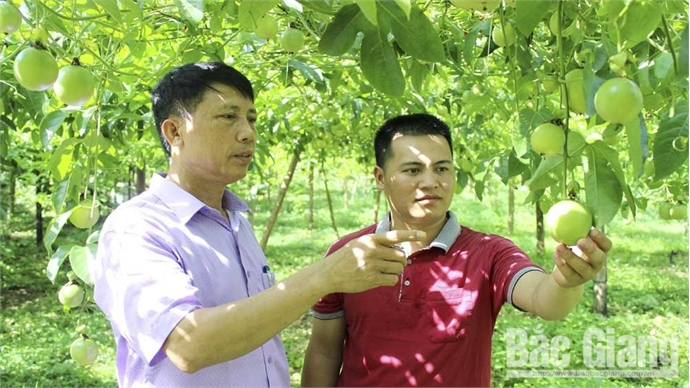 Nguyen Tien Quan gets rich in hard land