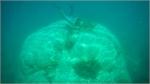 Giant coral block a secretive Con Dao treasure
