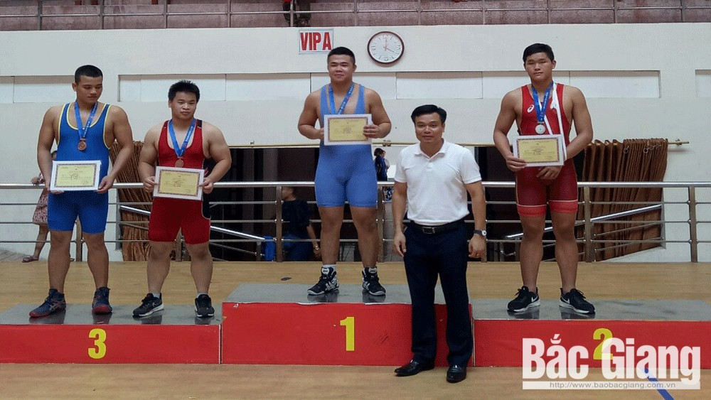 Bac Giang province, 24 medals, national freelance and traditional wrestling championship, Vietnam Sports Administration, Vietnam Wrestling Federation