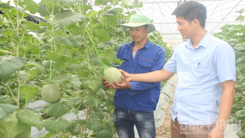 Nông thôn mới, cuộc sống mới ở Tân Yên