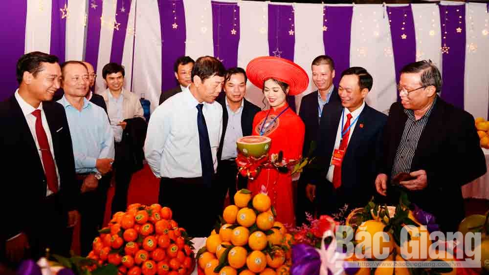 Nguyễn Việt Oanh, Bí thư Huyện ủy, Lục Ngạn, Bắc Giang,  hạ tầng giao thông - đô thị, vùng cây ăn quả trọng điểm
