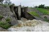 Yên Dũng: Kịp thời tiêu úng cho hơn 900 ha lúa