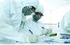 Bệnh nhân 496 tử vong do suy thận mạn tính, nhiễm trùng máu, suy tim cấp và mắc Covid-19