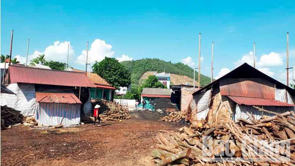 Bắc Giang: Sản xuất than hoa gây ô nhiễm môi trường ở xã Tam Dị (Lục Nam)