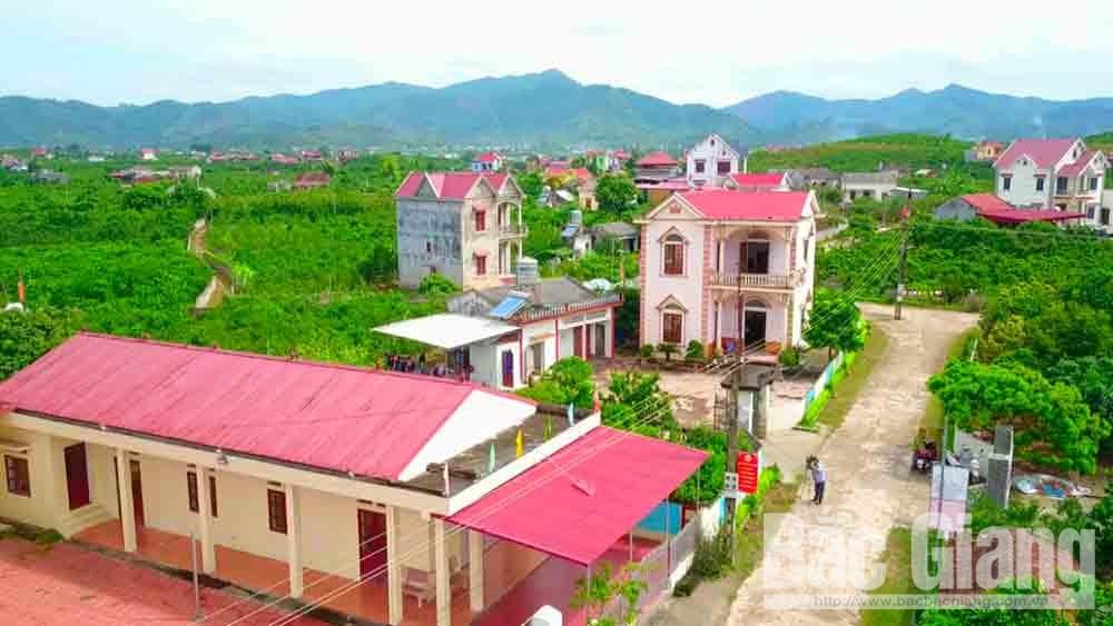 Impression, Luc Ngan district, economic development,  due attention, economic achievements,  prosperous changes, urban and rural traffic infrastructure, high economic value