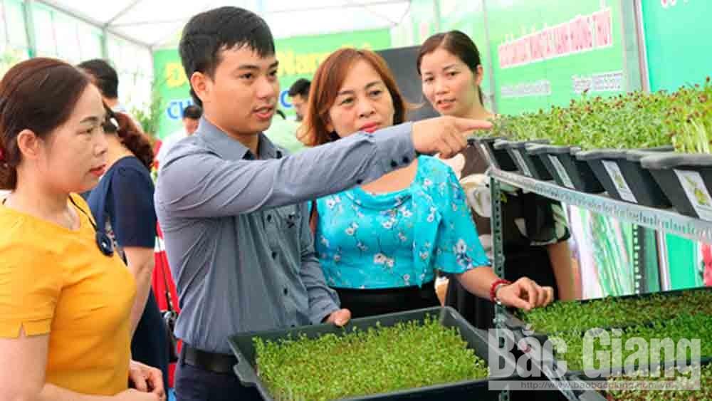 Chủ cơ sở sản xuất rau mầm phường Xương Giang giới thiệu mô hình.