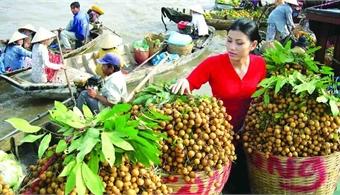 Tens of tonnes of Vietnamese fresh longan enter Australian market