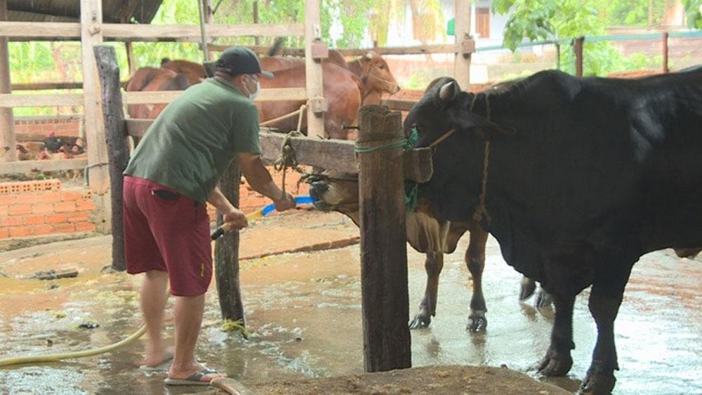Đắk Lắk, Bắt quả tang, lò mổ. bơm nước vào bụng bò, giết mổ