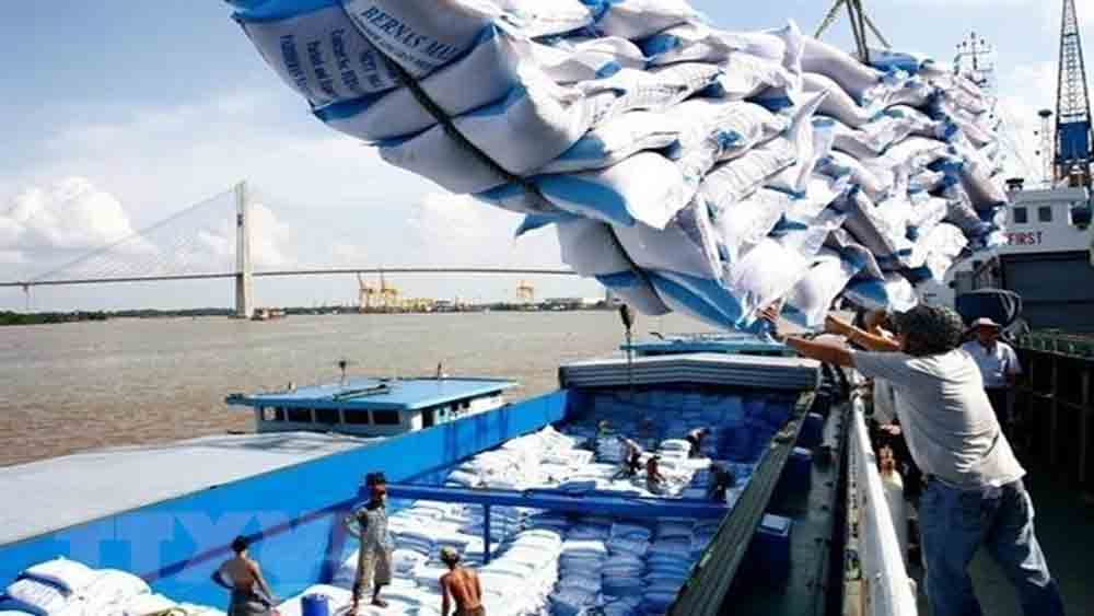 Vietnam sees hike in rice exports to Africa