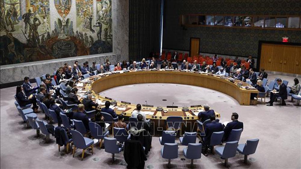 Hội đồng Bảo an,Liên hợp quốc,cấm vận vũ khí,Iran