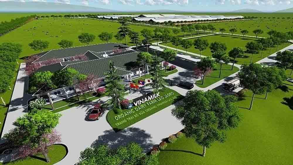 Vinamilk, Laos subsidiary, Dairy giant,  organic dairy farm, high-tech dairy farm, apanese livestock, organic farm