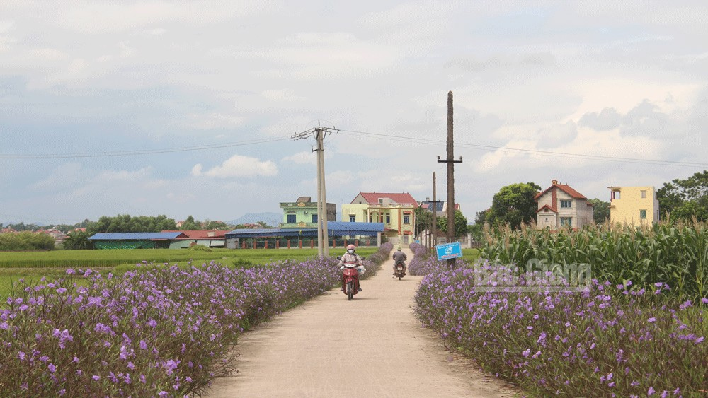 New colours, Safety Zone II, Hiep Hoa district, Bac Giang province,  heroic tradition, August Revolution, socio-economic infrastructure, material and spiritual life