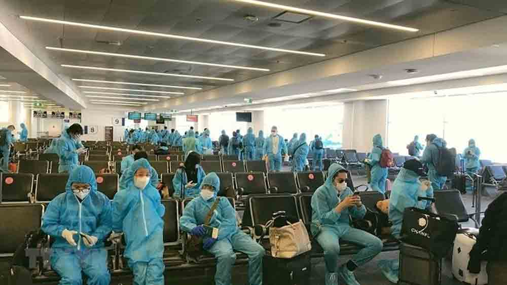 280 Vietnamese citizens, brought home, Europe, South America, Africa, national flag carrier, favourable conditions, domestic quarantine capacity