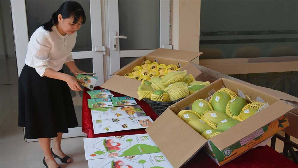 Vietnam to resume export of fruit to the US