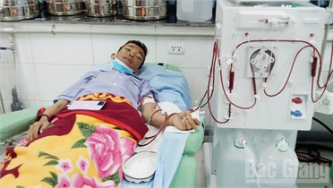 Yên Dũng: Gia đình có hai cha con cùng bệnh tật cần giúp đỡ