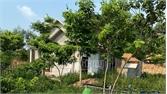 Chấn chỉnh công tác quản lý đất đai tại xã Lãng Sơn (Yên Dũng)