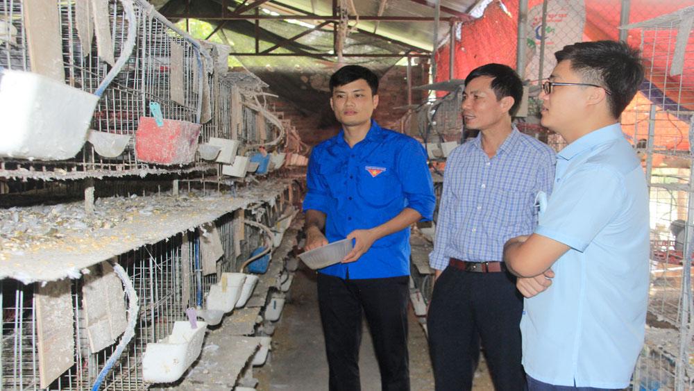 Tuổi trẻ Bắc Giang lập nghiệp trên quê hương