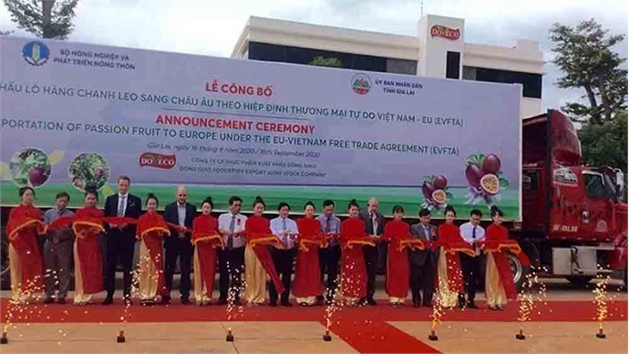 Vietnam exports first batch of passion fruit to Europe