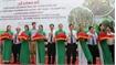Ben Tre exports first batch of fruit to EU under EVFTA