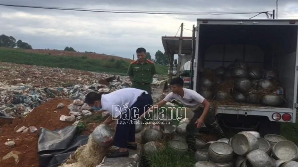 Bắc Giang: Tiêu hủy hơn 1,1 tấn giá đỗ có sử dụng chất cấm