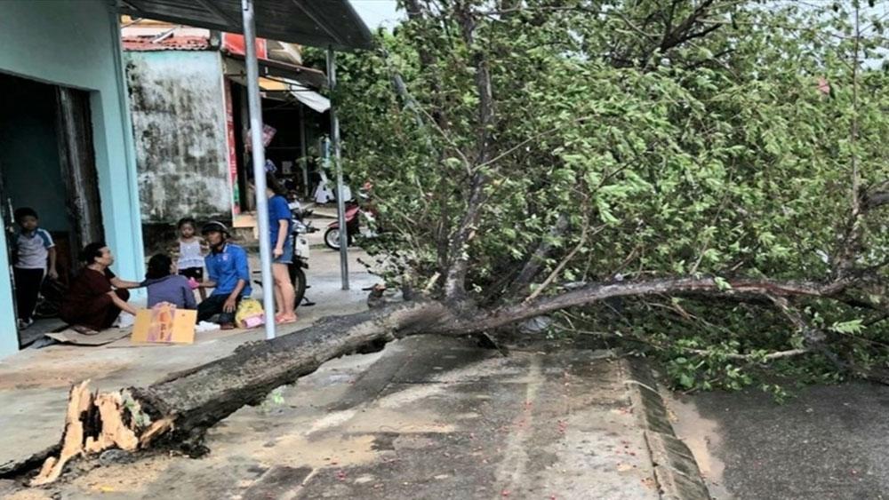 Thiệt hại, bão số 5, 1 người chết, 1 người mất tích, 31 người bị thương