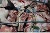 Tuyên Quang: Phát hiện gần 1 tấn lợn và thịt lợn mắc dịch tả lợn châu Phi