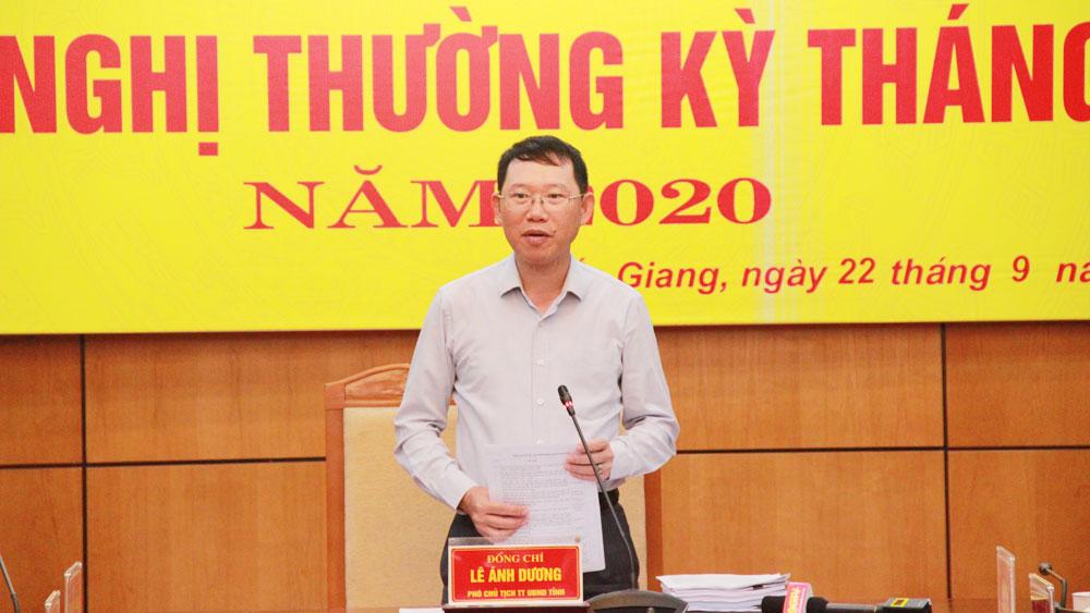 Phó Chủ tịch Thường trực UBND tỉnh Lê Ánh Dương: Tập trung hoàn thành các chỉ tiêu năm 2020 ở mức cao nhất