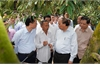 Thủ tướng thăm mô hình nông nghiệp ''trái mùa nghịch vụ'' ứng phó hạn mặn