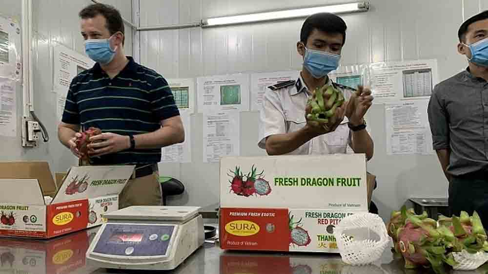 Quarantine, fruit exports to US, Animal and Plant Health Inspection Service, crucial importer,  agricultural products, fruit irradiation