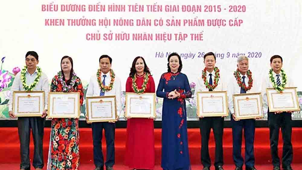 Farmers' income, the end of 2020, Hanoi Farmers' Association, outstanding collectives and individuals,  average income