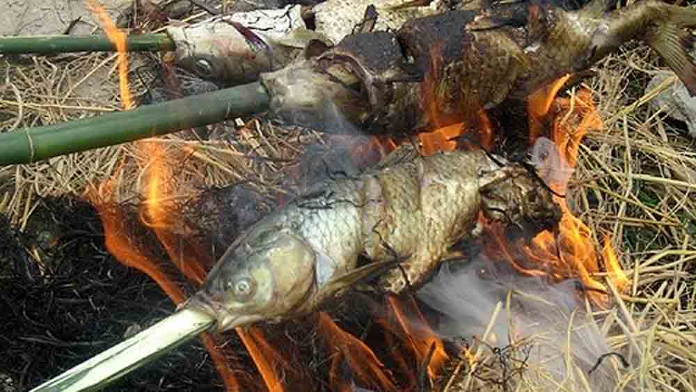 Ca Nuong Do, steamed broiled fish, Hoa Binh province, Da River, fresh and nutritious, fresh fragrant flavour