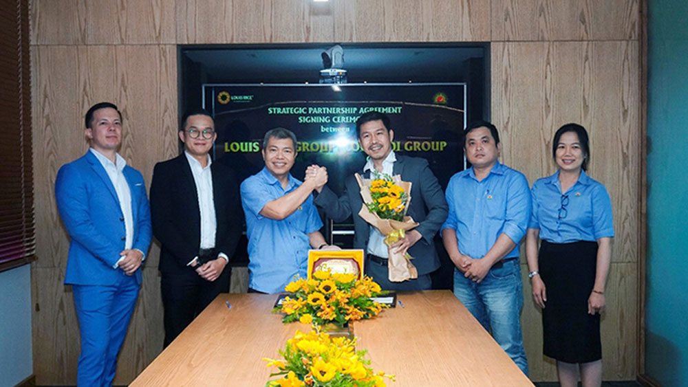Loc Troi Group, Louis Rice, strategic partnership, Agriculture producers and exporters, rice purchasing, distribution and export