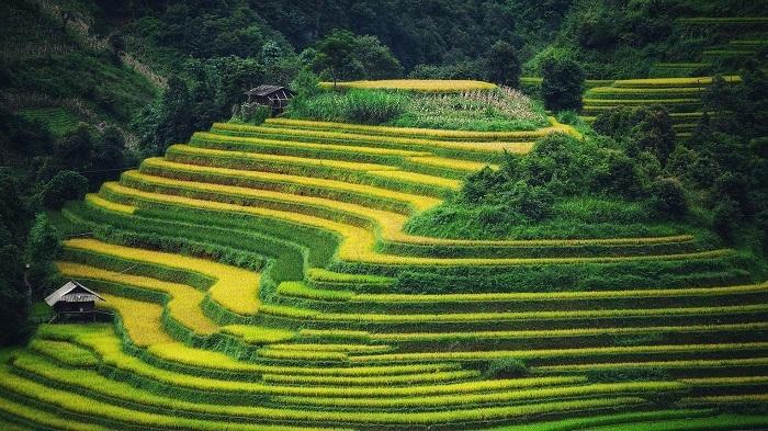 Vibrant atmosphere return to local tourism sites