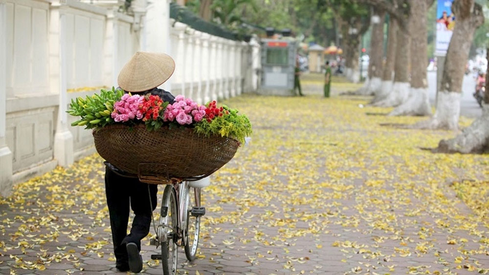 Autumn comes to Hanoi