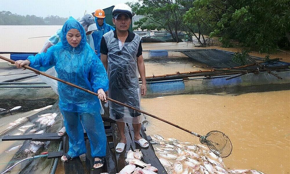 Milk of human kindness, flood-ravaged Hue, raging floods, floods and landslides,  Distributing food, offering accommodation