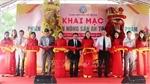 Food safety week 2020 opened in Nha Trang