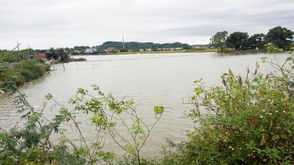 Chủ tịch UBND xã Đức Giang (Yên Dũng) không giao khoán ao, hồ trái quy định