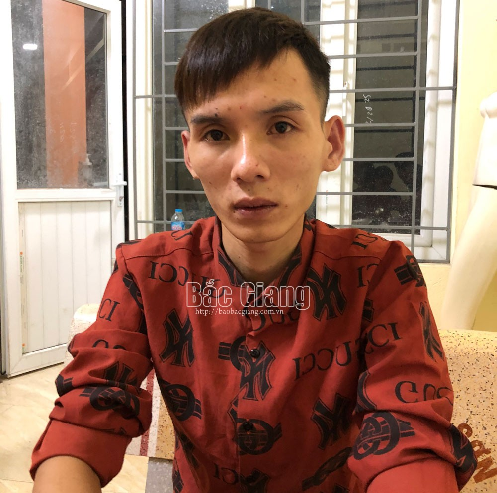 trộm cắp tài sản; Lục Nam; Bắc Giang