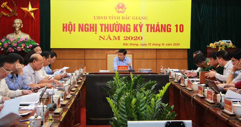 Bac Giang provincial leader urges to comprehensively complete the major socio-economic criteria in 2020