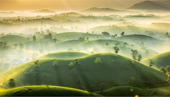 Vietnamese amateur wins prize at international weather photo contest