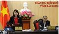 Đại biểu Hà Thị Lan (Bắc Giang): Cần có giải pháp quyết liệt ngăn chặn một số loại tội phạm
