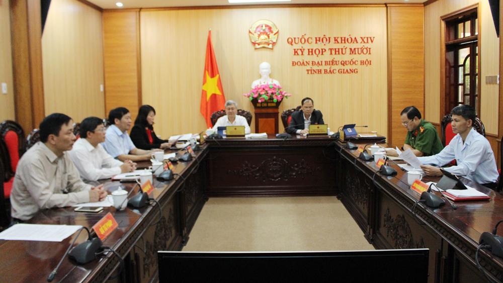 Đại biểu Hà Thị Lan,  thảo luận trực tuyến, công tác phòng, ngừa tội phạm xã hội, kỳ họp thứ 10, Quốc hội XIV.