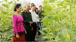 Laos students visit farming model in Yen Dung district