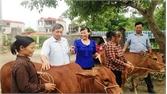 Phụ nữ thị trấn Bố Hạ - dẫn đầu nhiều phong trào thi đua
