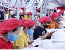 Bac Giang: Export turnover hits over 7 million USD