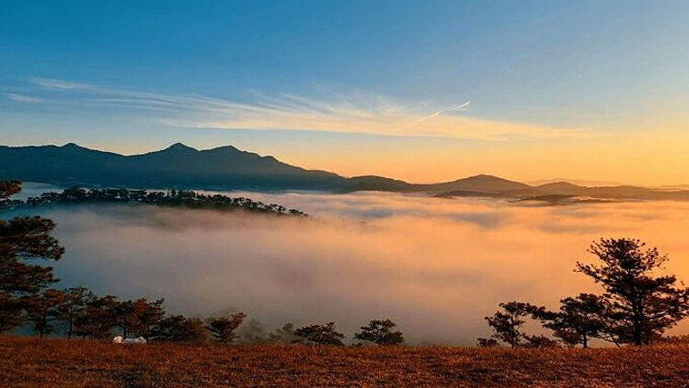 Five popular spots, cloud hunting, Da Lat town, cloud-covered hills, lovers of dawn, pine trees, endless cloudy sky
